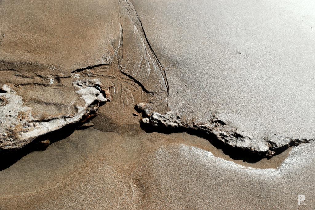 plage nature paysage